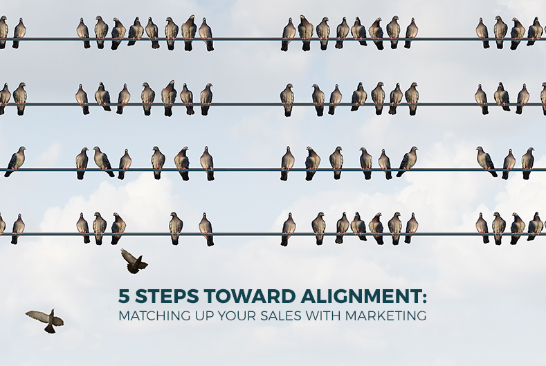 5_steps_toward_alignment_zq